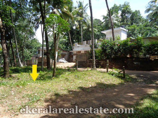 kerala real estate trivandrum Pattakulam Kattakada land plots sale properties in kerala