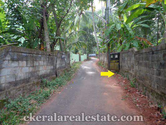 residential-land-plots-60-cents-for-sale-in-kanjiramkulam-trivandrum-real-estate-properties