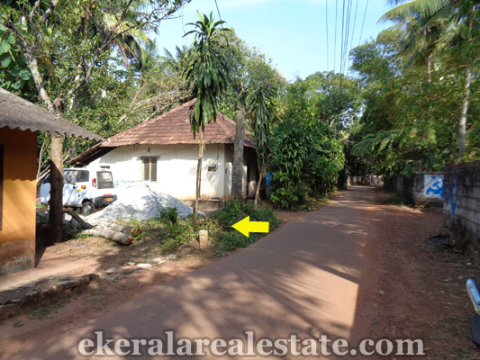 land-in-trivandrum-residential-land-plots-for-sale-in-chenkottukonam-sreekaryam-trivandrum-real-estate-properties