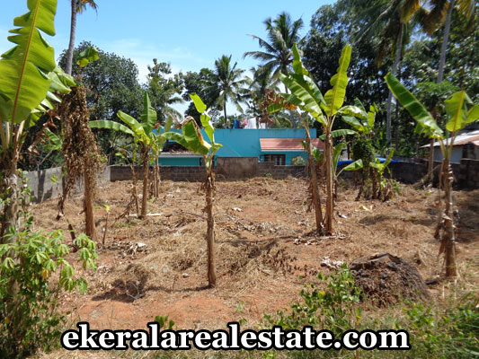 land-properties-in-trivandrum-6-cents-land-plots-for-sale-in-neyyattinkara-trivandrum-kerala