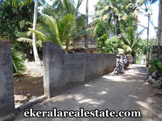 land-properties-in-trivandrum-land-plots-for-sale-in-maruthankuzhy-near-sasthamangalam-trivandrum-kerala