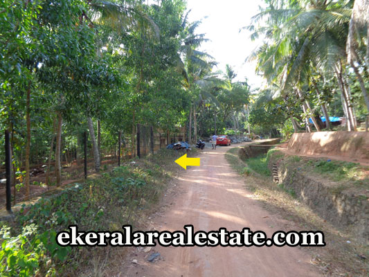 real-estate-trivandrum-land-plots-sale-at-vizhinjam-uchakkada-trivandrum-kerala-real-estate