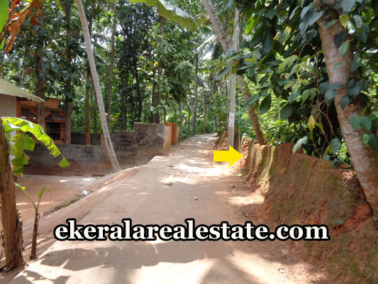real-estate-properties-trivandrum-land-plots-sale-at-neyyattinkara-trivandrum-kerala-real-estate