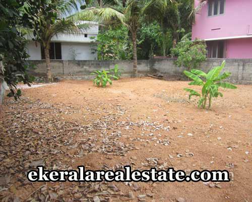 real-estate-properties-trivandrum-land-plots-sale-at-neeramankara-karamana-trivandrum-kerala-real-estate