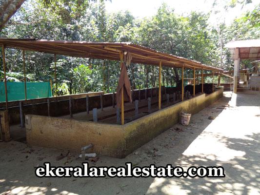 kerala-real-estate-properties-land-sale-at-venjaramoodu-trivandrum-pothencode-properties