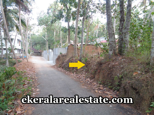 kerala-real-estate-properties-land-sale-at-balaramapuram-trivandrum-pothencode-properties