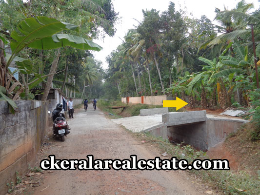 kerala-real-estate-properties-land-sale-at-venganoor-trivandrum-venganoor-properties