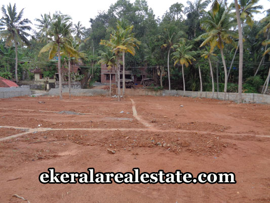 kerala-real-estate-properties-pongumoodu-sreekariyam-land-for-sale-properties-in-trivandrum