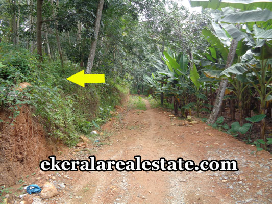 residential-land-plots-for-sale-in-pothencode-trivandrum-kerala-real-estate-land-sale-in-trivandrum