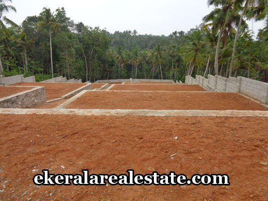 property-sale-in-trivandrum-land-sale-in-vellayani-trivandrum-kerala-real-estate