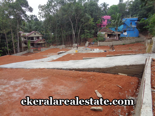 property-sale-in-trivandrum-land-sale-in-malayam-pappanamcode-trivandrum-kerala-real-estate