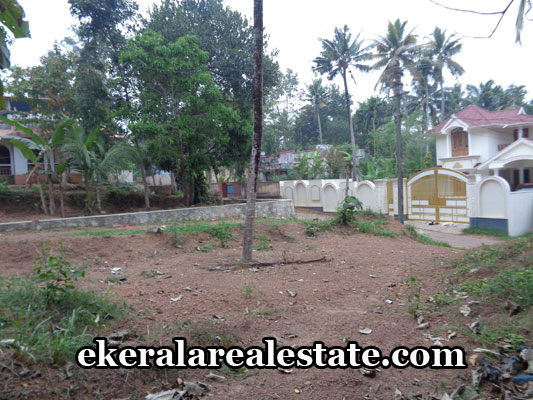 property-sale-in-trivandrum-residential-land-sale-in-varkala-trivandrum-kerala-real-estate
