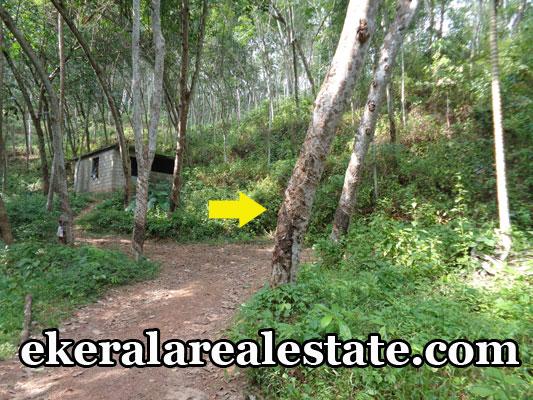 residential land plots sale in vembayam trivandrum vembayam real estate