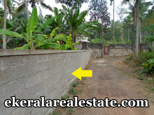 kerala real estate trivandrum Poojappura Mudavanmugal land house plots sale