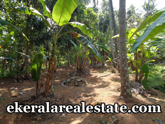 attingal real estate agents Attingal land brokers Attingal land house plots sale trivandrum