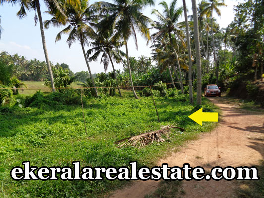 cheap rate house plots sale at attingal trivandrum land price below lakhs per cent land