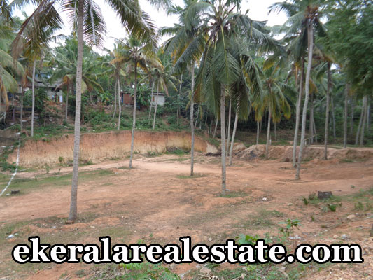 real estate properties vellayani trivandrum land house plots sale urgent sale at vellayani trivandrum kerala