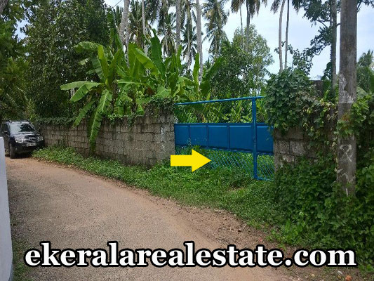 real estate properties vellayani trivandrum land plots sale urgent sale at vellayani