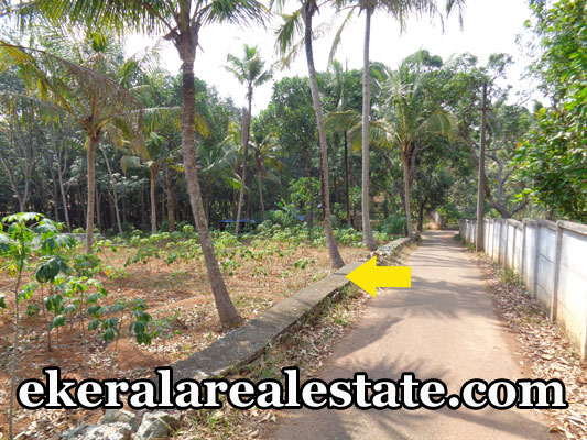 real estate properties Kallambalam trivandrum land plots sale urgent sale at Kallambalam