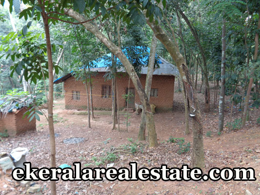 real estate properties malayinkeezhu trivandrum land plots sale urgent sale at malayinkeezhu