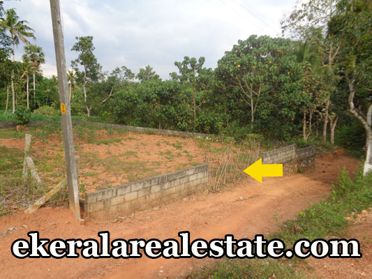 real estate properties venjaramoodu trivandrum land plots sale urgent sale at venjaramoodu