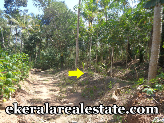 residential land sale at Sreekaryam Chenkottukonam  real estate kerala trivandrum properties  Chenkottukonam Sreekaryam