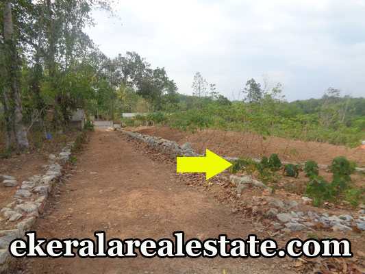 Land located at Karakulam Keltorn Juntion Land Area : 52 Cent 2 Side Road Well Water Covered Shed – 1 Bus Stop – 100 meter Karakulam Juntion – 2 km Keltorn Juntion – 1 km Vidyadhiraja School – 1 km Bank – 1 km Price : 1.5 Lakhs / Cent (Nego) Contact No : +91 9446200787, 9497535724  When you call, plz mention that you found this ad on ekeralarealestate.com