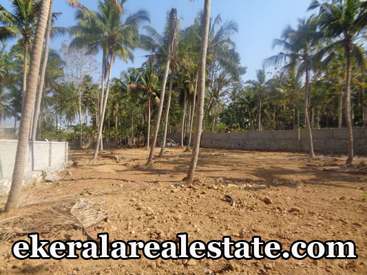 Land Located at Ariyottukonam Pothencode Kaniyapuram Road Land Area : 5 Cent, 3 Plot Lorry Access Bus Stop – 300 meter School, Hospital – 700 meter Pothencode Juntion – 700 meter Price : 3.25 lakhs / Cent Contact no – +91 9744869446 , 8089417345  When you call, plz mention that you found this ad on ekeralarealestate.com