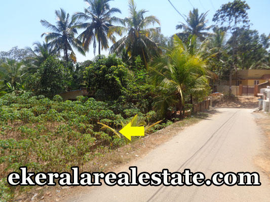 Land Located near Vilappilsala Junction Land Area : 14.50 Cent Well Water Bus Stop – 25 meter Government Hospital – 100 meter Governmen School – 70 meter Police Station – 70 meter Price : 2.5 lakhs (nego) Contact No : +91 9497880371, 0471 2360370  When you call, plz mention that you found this ad on ekeralarealestate.com