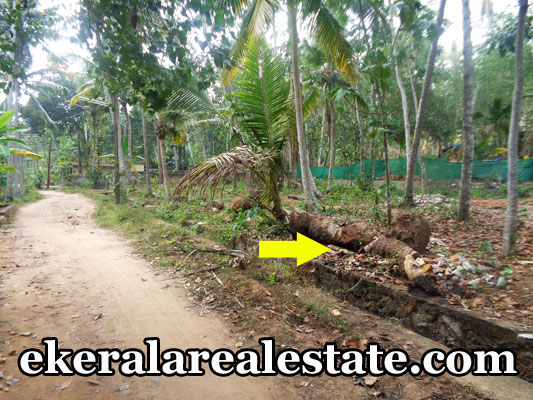 Land located at Balaramapuram Kattachalkuzhi Land Area : 9.25 Cent Lorry Access Main Road – 500 meter Bus Stop – 500 meter Balaramapuram Juntion – 4 km Vizhinjam Port -5.6 km SN UPS School -500 meter Price : 3.25 lakhs/ Cent (nego ) email : sumeshb4u@gmail.com Contact No : +91 9446408040, 9995012044  When you call, plz mention that you found this ad on ekeralarealestate.com