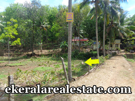 Land Located Near Palode Police Station Land Area : 36 Cent Two Wheeler Access only(If the Culvert is widened  with Permission of Panchayat Four Wheeler can be Accessed). Bus Stop – 200 meter Palode Junction – 500 meter Nanniyode Junction – 600 meter Perakuzhi LPS School – 30 meter Price : 1 Lakhs / Cent(Nego) Contact No : +91 9447695811,0472-2804636 (after 4pm)  When you call, plz mention that you found this ad on ekeralarealestate.com