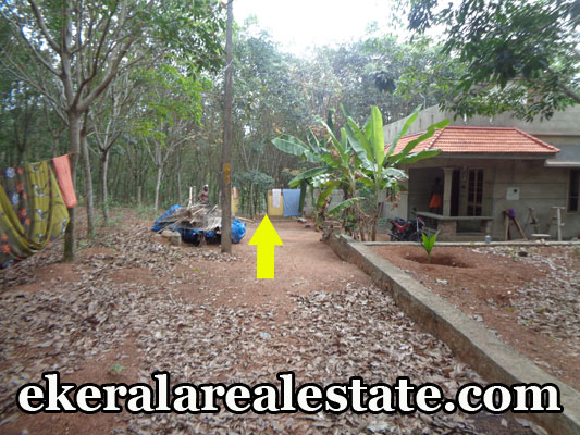 Residential land sale at Neyyattinkara Amaravila  real estate trivandrum kerala  Neyyattinkara Amaravila properties trivandrum