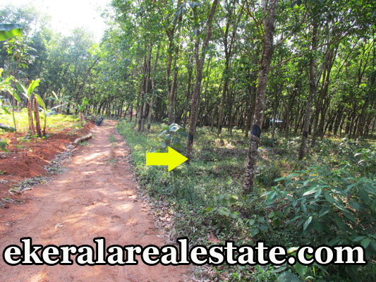 Land located at Venjaramoodu Kootukunnam Road Land Area : 1 Acre Lorry Access M C Road – 2 km Gokulam Medical College – 3 km Venjaramoodu Bus Stop – 3 km KSRTC Bus Route Water and Electricity Available Price : 1.30 Lakhs/ Cent Name : Mr. Jacob Thomas Contact no : +91 9447735207, 0471 – 2315207  When you call, plz mention that you found this ad on ekeralarealestate.com