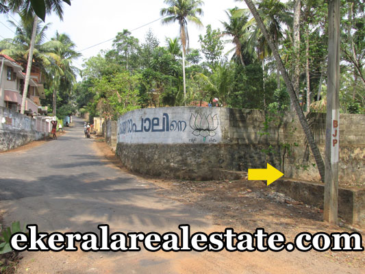 Land located at Melamcode Kurumi Road Land Area : 10.5 Cent Lorry Access Bus Stop Nearest Ponnumangalam School – 300 meter Price : 6 lakhs / Cent (Nego) Contact no : +91 8281186660, 9446037973  When you call, plz mention that you found this ad on ekeralarealestate.com