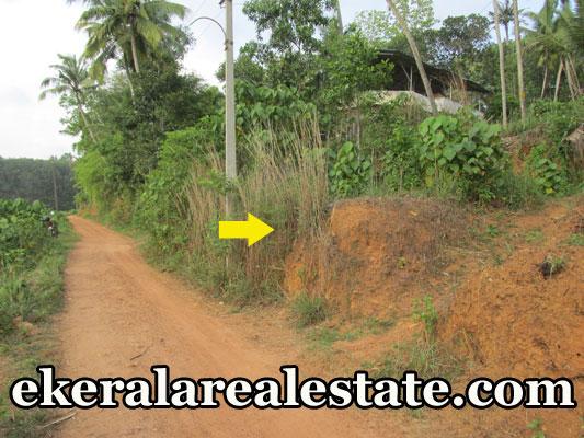 residential land for sale at  Attingal Kaduvayil palli  real estate trivandrum  Attingal Kaduvayil palli properties trivandrum