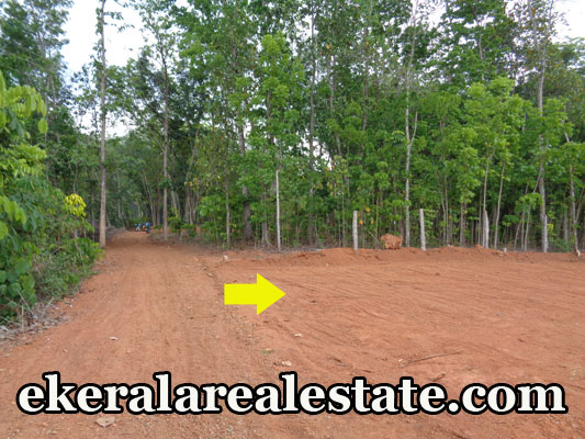 residential land for sale at Neyyattinkara real estate trivandrum Neyyattinkara Trivandrum  properties trivandrum