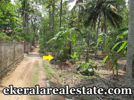 residential land for sale at Thonnakkal Mangalapuram real estate trivandrum Thonnakkal Mangalapuram Trivandrum  properties trivandrum