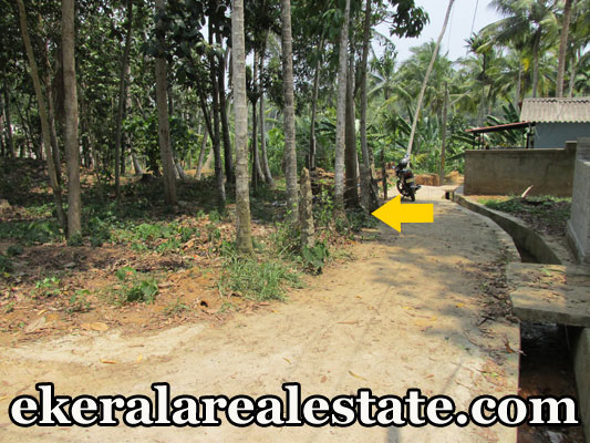 Located Near Nims Hosptial Neyyattinkara Land area : 42 cent of land NH – 200 meter Will be Sold as Plot also Price : 2 lakhs / Cent Contact no : +91 9497189244  When you call, plz mention that you found this ad on ekeralarealestate.com