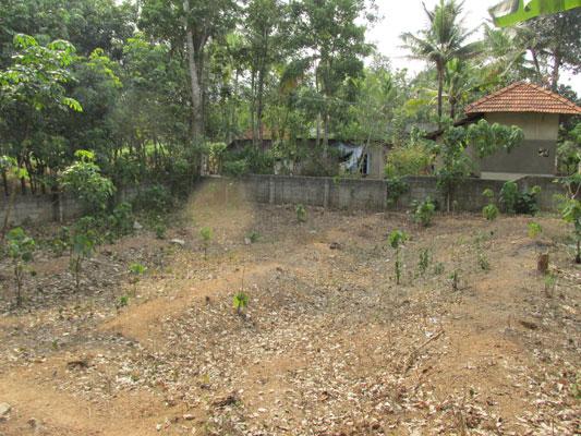 residential house land plot for sale at Venjaramoodu Aliyad trivandrum estate kerala trivandrum Venjaramoodu Aliyad