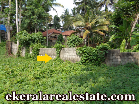 Lorry access land for sale at trivandrum real estate for Land for sale in kerala