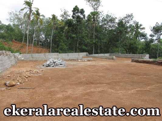 kerala real estate Thirumala Perukavu Trivandrum residential land for sale at Thirumala Perukavu Trivandrum kerala