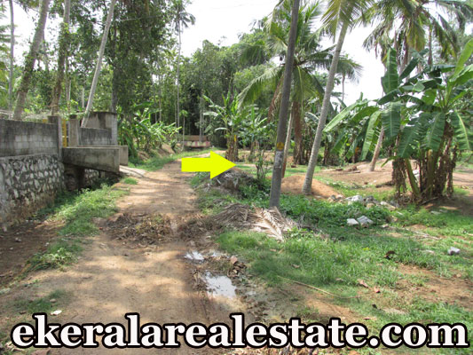 lorry access plot for sale at Attingal Mamam Trivandrum Attingal real estate kerala trivandrum Attingal Mamam Trivandrum