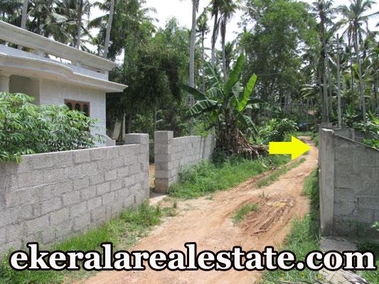 residential house plot for sale at Kaniyapuram Trivandrum Near Powrgrid Andoorkonam Route real estate trivandrum properties