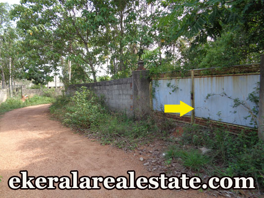 9.5 cent residential land plot for sale at Kowdiar Near Kowdiar Palace Trivandrum Kerala real estate kerala trivnadrum