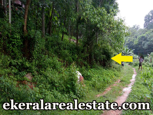 40 lakhs rubber land for sale at Thattathumala Kilimanoor real estate properties trivandrum kerala