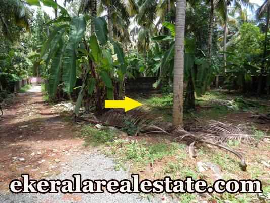 5 cent Lorry Access Residential Land Plot Sale at Kurishadi Junction Nalanchira Trivandrum Kerala Real Estate Properties