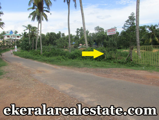 44 cent residential land for sale at Mamam Attingal Trivandrum Kerala real estate properties sale Mamam Attingal Trivandrum
