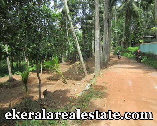 28 cent land plot for sale at Pravachambalam Trivandrum Kerala real estate trivandrum properties sale
