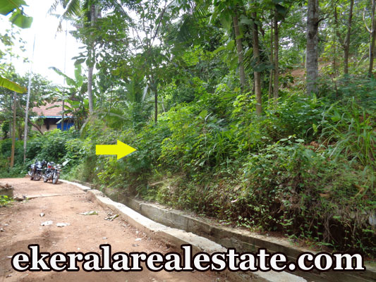 residential land for sale at Kollamkonam Peyad Trivandrum real estate trivandrum Kollamkonam Peyad Trivandrum land sale