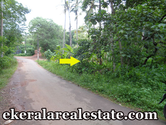 lorry access plot for sale at Vellalloor Kilimanoor real estate trivandrum Vellalloor Kilimanoor